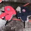 帽子/キャップ ゴージャスな煌めきの新作 カナダグース 2019秋冬憧れスタイル  Canada Goose  2色可選 トレンドをおさえたアイテム
